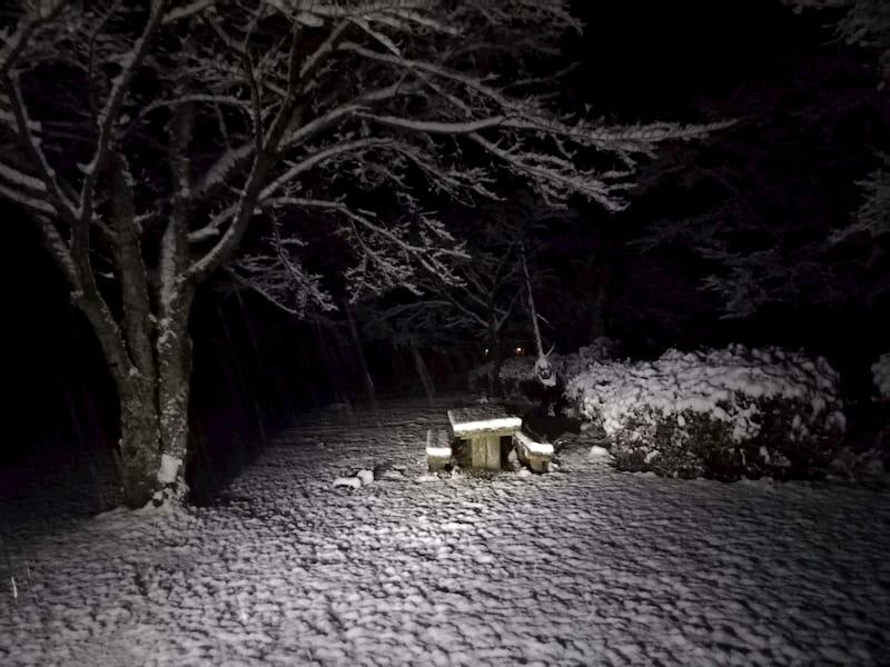 冬の岩倉ファームパーク
